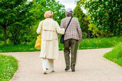 elder elderly senior geriatric frail falls risk fall arthritic parkinsons alzheimers disease companion nurse nursing aged hospital north shore