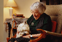 Conditions Daughterly Care specialises in private Elderly live-in care