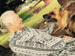 elder live-in carer 24hr 24 hour pet cat dog livein private in home care level 4 package