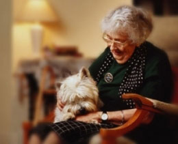 elderly aged in home senior livein live-in care private north shore northern beaches 24hr 24 hour eastern suburbs bondi